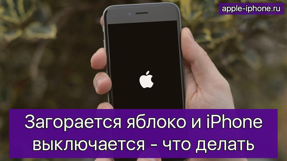 iphone 5s не включается горит яблоко и перезагружается