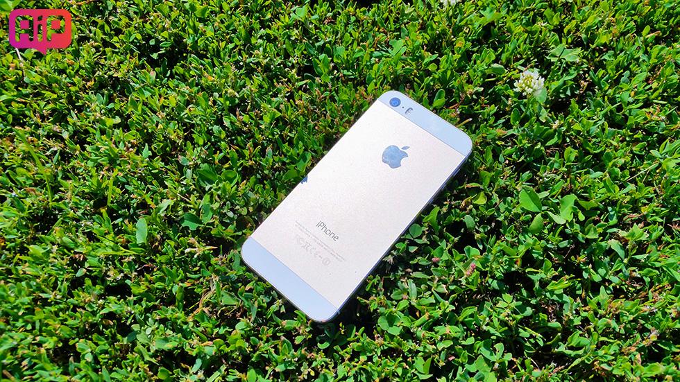 Цена iPhone 5sупала дорекордно низкого уровня вРоссии