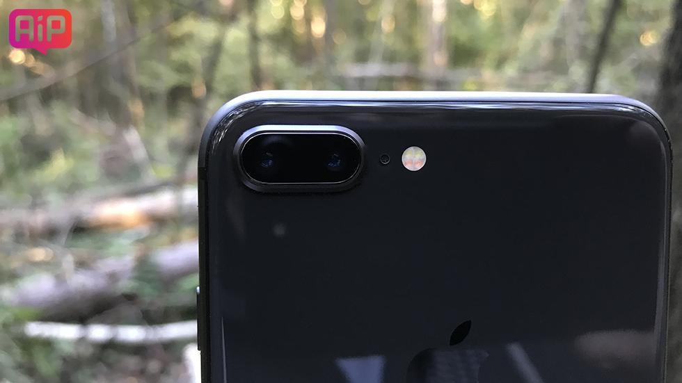 Качество фото iPhone 8 Plus (примеры снимков)