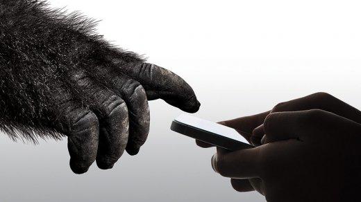 Презентовано стекло Gorilla Glass 6для новых iPhone— оно выдерживает 15падений