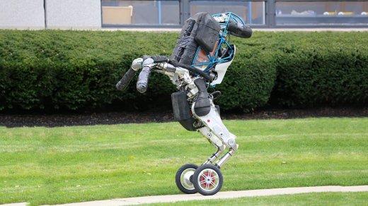 Грузчики напряглись: «робот-птица» Boston Dynamics заменяет рабочих (видео)