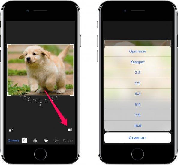 учебнике использованы как кадрировать фото для инстаграм с телефона многих городах странах