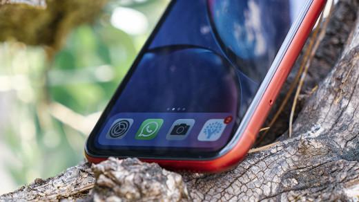 Раскрыты первые подробности одешевом iPhone SE2Plus