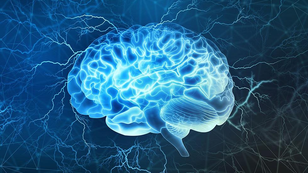 Сколько информации содержит мозг человека? Сотни тысяч ТБ!