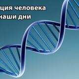 Учёные: эволюция человека продолжается и сейчас
