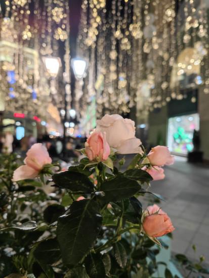 розы снято на сяоми