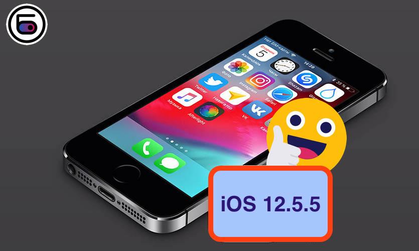 Все iPhone и iPad  с поддержкой iOS 12.5.5